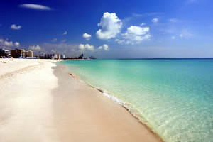 Is a trip to Miami, Florida in the cards this spring break?